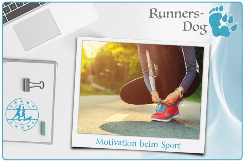motivation-beim-sport-beitragsbild-runners-dog
